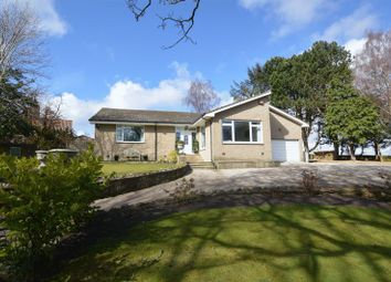 Thumbnail 3 bed bungalow for sale in Newton-On-The-Moor, Morpeth