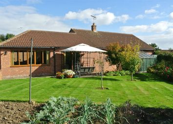 Thumbnail 3 bed detached bungalow for sale in Millfield Road, Morton, Bourne, Lincolnshire