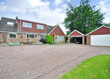 Thumbnail 4 bed detached house to rent in Rowplatt Lane, Felbridge