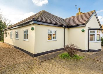 Thumbnail 4 bed detached bungalow to rent in Leeds Road, Selby