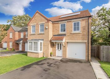 Thumbnail 4 bed detached house for sale in Maddison Grove, Normanby