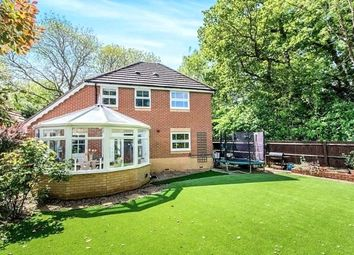 Thumbnail 4 bed detached house for sale in Whitebeam Close, Colden Common, Winchester, Hampshire