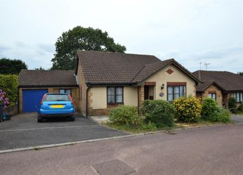 Thumbnail 3 bed detached bungalow for sale in Cypress Close, Honiton, Devon