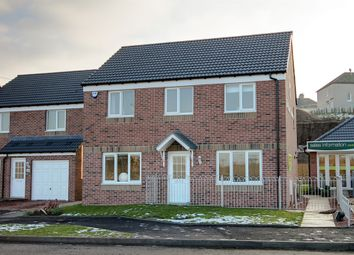 "Thumbnail 4 bed detached house for sale in ""The Ettrick"" at Dunlop Road, Stewarton, Kilmarnock"