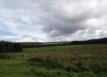 Land for sale in Plot 2, Wester Greens, Dunphail, Forres, Moray IV36