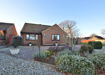 Thumbnail 2 bed detached bungalow to rent in Gymkhana Way, Heacham, King's Lynn