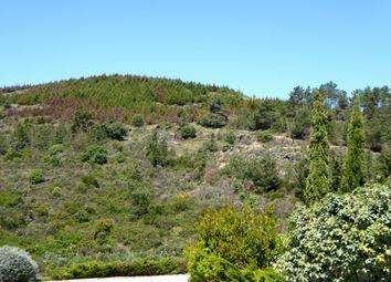 Thumbnail Land for sale in P774, 25 Ha In Douro With River View, Portugal, Portugal