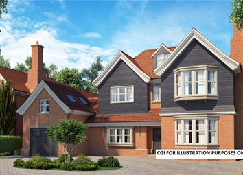 Thumbnail 6 bed detached house for sale in Chestnut Avenue, Chichester, West Sussex