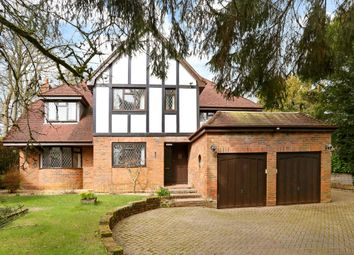 Thumbnail 5 bedroom detached house to rent in Wellhouse Road, Beech, Alton