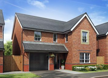 "Thumbnail 4 bed detached house for sale in ""Hale"" at Stretton Road, Stretton, Warrington"