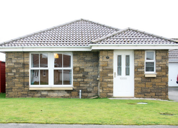 Thumbnail 3 bed detached bungalow to rent in Osprey Crescent, Nairn, 5LG