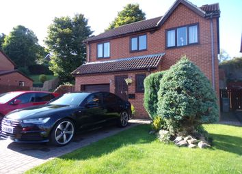 Thumbnail 4 bedroom detached house for sale in The Barns, Stanley