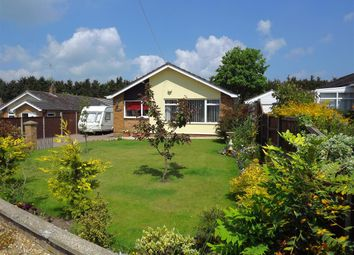 Thumbnail 2 bedroom bungalow for sale in North Street, Blofield, Norwich