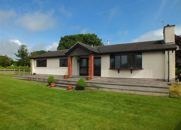 Thumbnail 3 bed bungalow to rent in Creg Mill Lodge, Silverdale Road, Ballasalla