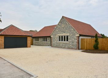 Thumbnail 4 bedroom detached bungalow for sale in Tuckers Lane, Baltonsborough, Glastonbury