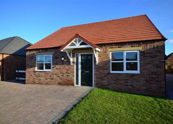 Thumbnail 3 bed detached bungalow for sale in Jasmine Close, Hailgate, Howden