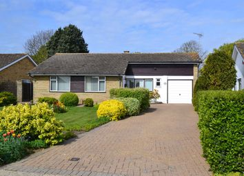 Thumbnail 3 bedroom detached bungalow for sale in Shepherds Walk, Chestfield, Whitstable