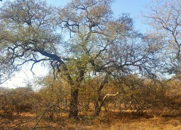 Thumbnail Land for sale in 10 Happyland, 10, Raptors View Wildlife Estate, Hoedspruit, Limpopo Province, South Africa