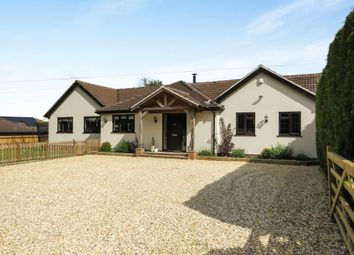 Thumbnail 4 bed detached bungalow for sale in Christmas Hill, South Wonston, Winchester