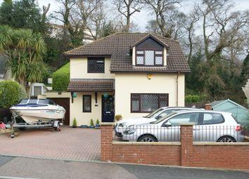 Thumbnail 4 bed detached house for sale in Southfield Avenue, Preston, Paignton