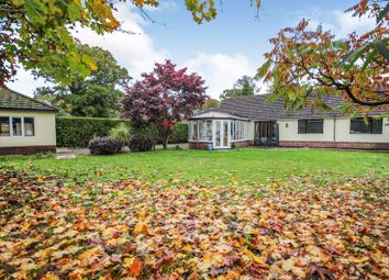 Thumbnail 3 bed detached bungalow to rent in Parley Close, West Parley, Ferndown