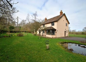 Thumbnail 3 bed country house for sale in Holford, Holford