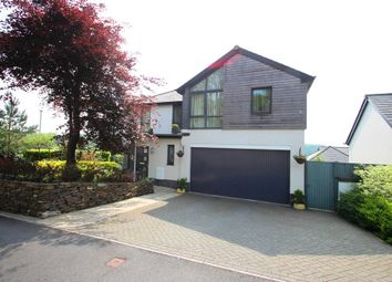 Thumbnail 5 bedroom property for sale in Looseleigh Park, Plymouth