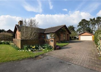 Thumbnail 4 bedroom detached bungalow for sale in Balcarras Retreat, Charlton Kings, Cheltenham, Gloucestershire