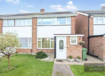 3 bed semi-detached house to rent in Alicia Avenue, Wickford, Essex SS11