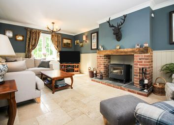 Thumbnail 4 bedroom detached house for sale in Half Moon Lane, Redgrave, Diss
