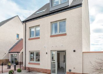 "Thumbnail 3 bed semi-detached house for sale in ""The Duffy"" at Phoenix Rise, Gullane"