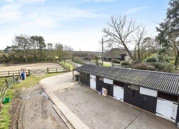Thumbnail 4 bed barn conversion for sale in Hamstreet, Ashford