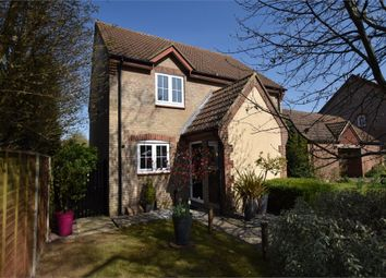 2 bed semi-detached house to rent in Savory Walk, Foxley Fields, Binfield, Berkshire RG42
