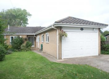 Thumbnail 4 bed bungalow to rent in Cemetery Lane, Westbourne, Emsworth
