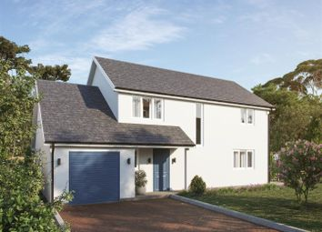 Thumbnail 4 bed detached house for sale in Llangammarch Wells