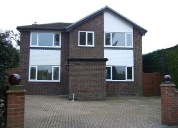 Thumbnail 4 bed detached house to rent in Broad Oak, Brede, East Sussex