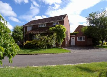 Thumbnail 4 bed detached house for sale in Sainsbury Close, Andover