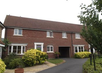 Thumbnail 4 bed property to rent in Chestnut Avenue, Great Notley, Braintree