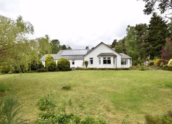 Thumbnail 4 bedroom detached bungalow for sale in Lamington, Kildary, Invergordon