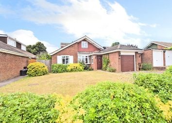 Thumbnail 4 bed detached bungalow for sale in Oatlands Road, Shinfield, Reading