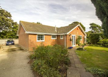 Thumbnail 3 bedroom detached bungalow for sale in Channel Lea, Walmer, Deal