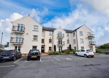 Thumbnail 2 bed flat for sale in The Parade, Carmarthen