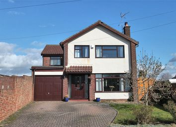 Thumbnail 4 bed detached house for sale in Maple Avenue, Thornbury, Bristol