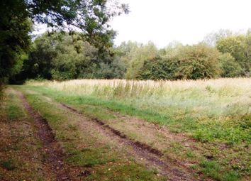 Thumbnail Land for sale in Church Road, Willington, Bedford