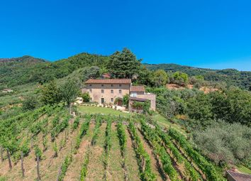 Thumbnail 6 bed country house for sale in Camaiore, Lucca, Toscana