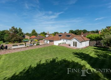 Thumbnail 3 bed semi-detached bungalow for sale in High Street, Dedham, Colchester
