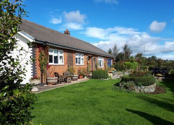 Thumbnail 4 bed bungalow for sale in New Mills, Newtown