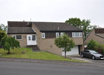 Thumbnail 5 bed detached house for sale in Shaws Park, Hexham, Northumberland.