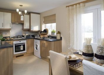 "Thumbnail 3 bedroom terraced house for sale in ""Palmerston"" at Tregwilym Road, Rogerstone, Newport"