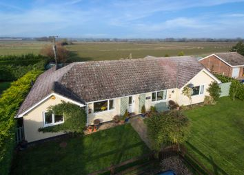 Thumbnail 4 bedroom bungalow for sale in Bardwell Road, Barningham, Bury St. Edmunds